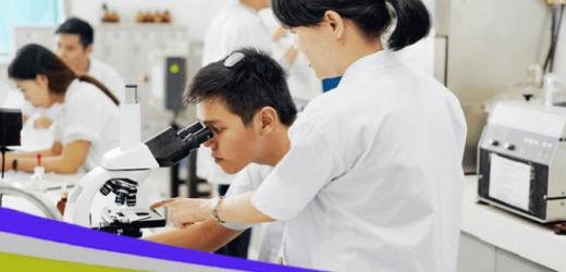 Các trường có ngành Dược ở Hà Nội là những trường nào?